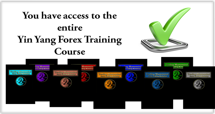 Professional forex training